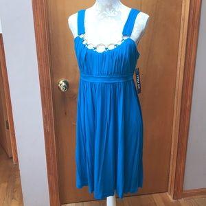 NWT Muse stretch knit dress. Size 10
